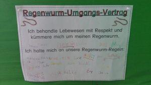 regenwurm3